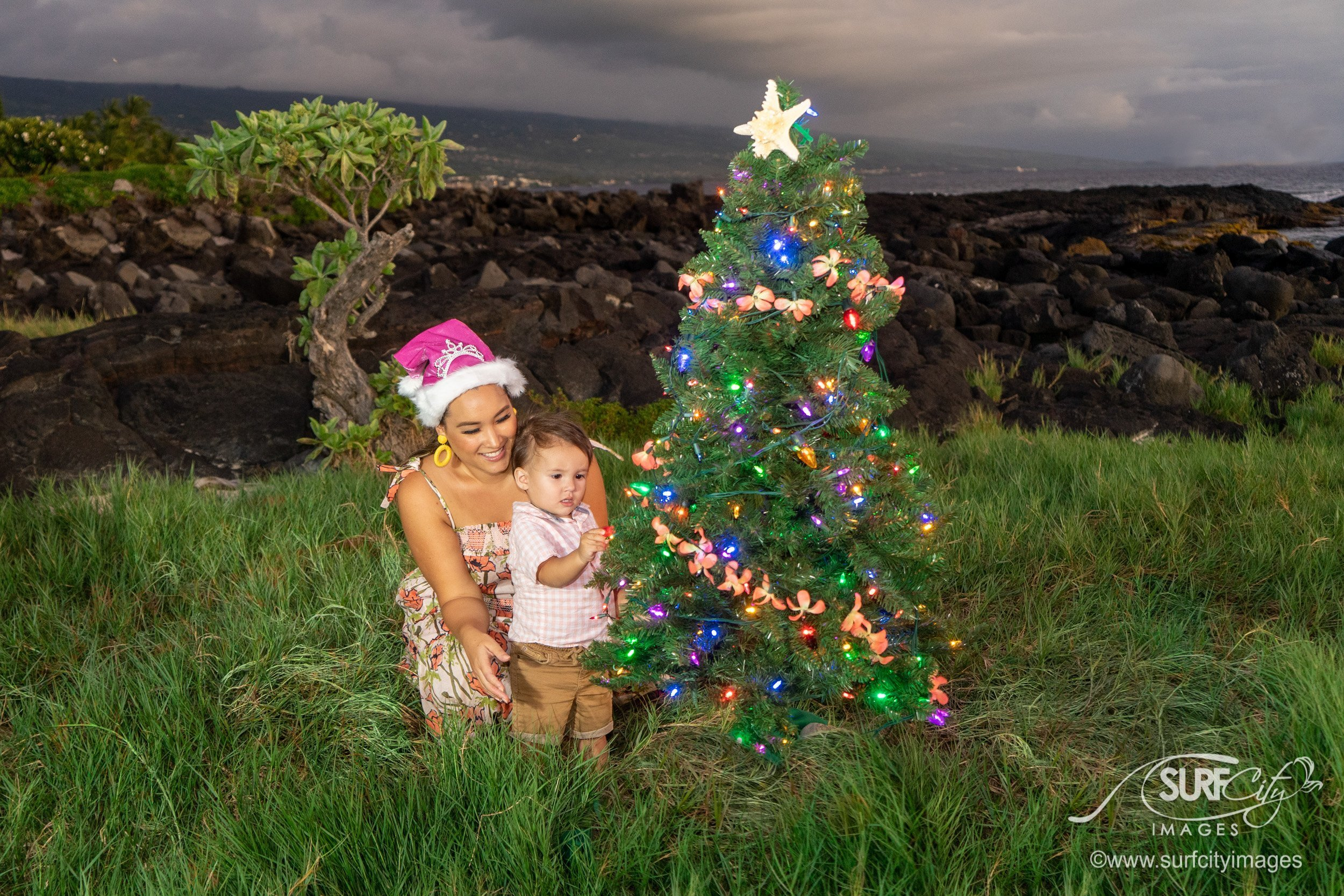 Hawaiian Christmas Tree